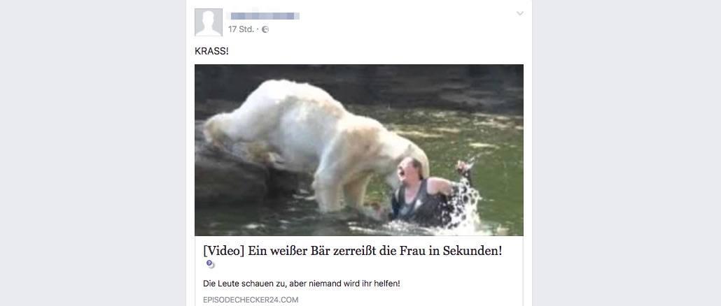 Weißer Bär Zerreißt Frau In Sekunden