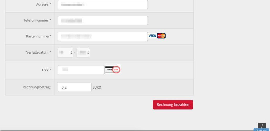 Das ist der zweite Teil der Webseite, wo Sie Ihre Kreditkartendaten eingeben sollen. (Screenshot)