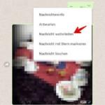 WhatsApp Nachrichten weiterleiten - Browser