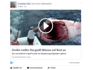Facebook Video Haiangriff
