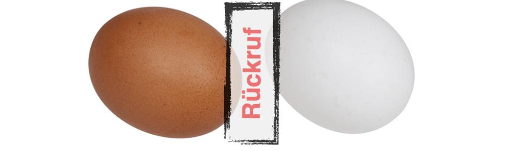 Axvitalis GmbH: Rückruf von Eiern aus Bodenhaltung – Befall mit Salmonellen