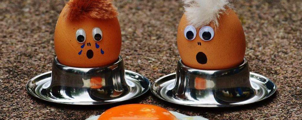 Eier-Skandal: Erneut mit Fipronil belastete Eier in Deutschland bei Aldi, Lidl und Penny- Update