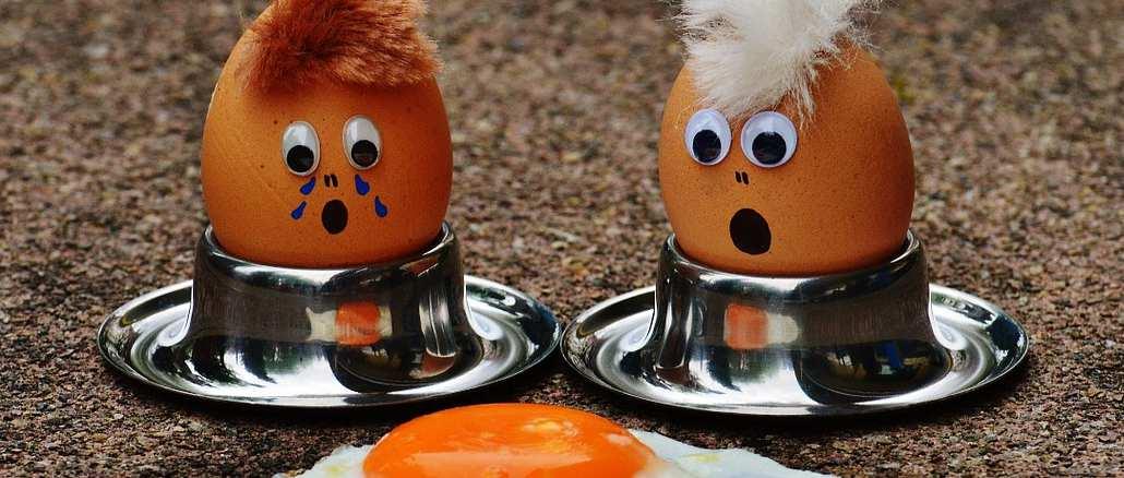 Firma Eifrisch ruft Eier in mehreren Bundesländern zurück – Salmonellen