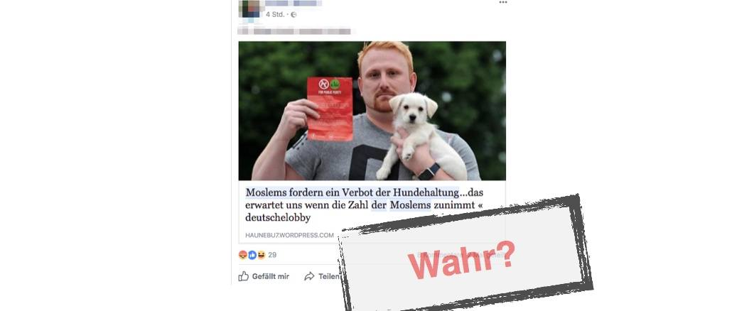 Moslems Und Hunde