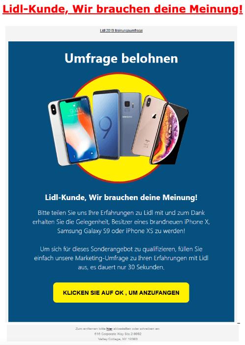 2019-04-02 Lidl Spam-Mail Lidl-Kunde Wir brauchen deine Meinung