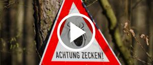 Zecken Warnung