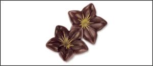 Rueckruf 3D Schokoladen Blueten